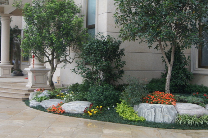 办公室绿植摆放_花卉绿植租摆实景 - 长沙一诺花卉